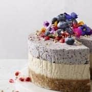 Raw Blueberry & Cashew Coconut Cake